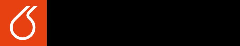 Logo vscht